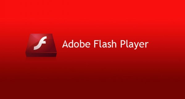 Adobe Flash Training
