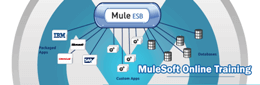 Mulesoft Training