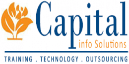 Capital Info Solutions Logo