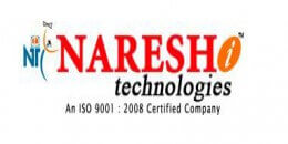 Naresh IT Technologies Logo
